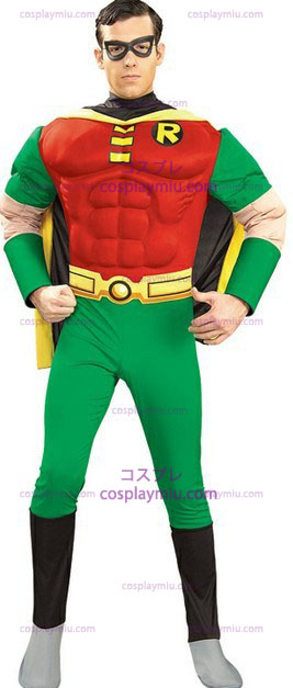 Adults Robin Costume